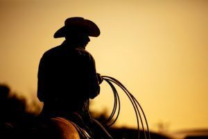 Cowboy with lasso silhouette at small-town rodeo.